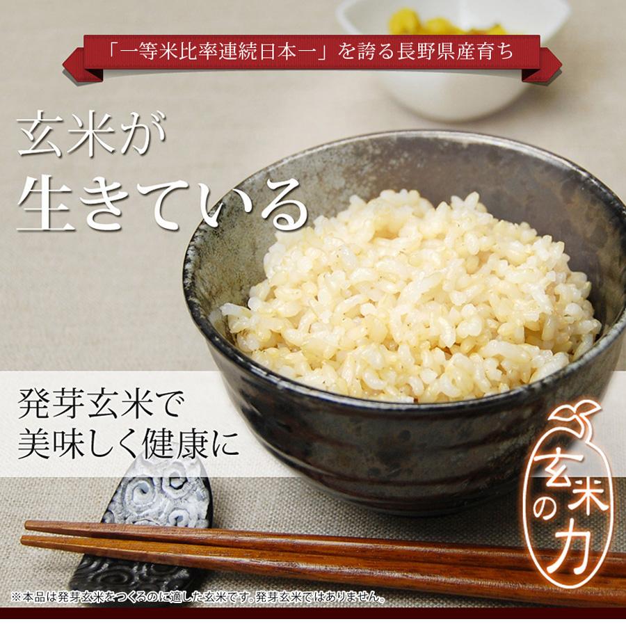 生きている玄米 5kg