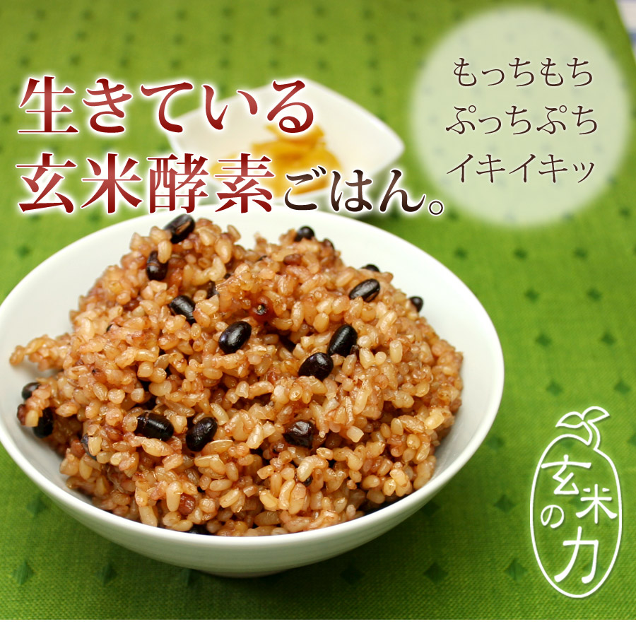 玄米酵素ブレンド500g